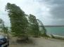 180621 Störmthaler See
